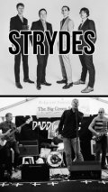 The Strydes And Daddy-Long Legs